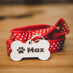 laser engraved dog tag